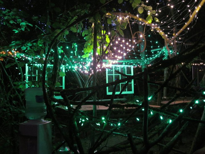 Woods stage, a dark space lit up by a web of green lights